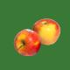 Yona gold of Elstar appels van Buitendijk Dagvers bv Rotterdam voor de Tafellunch